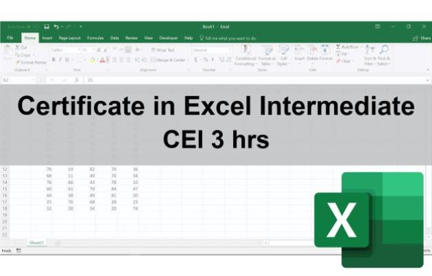 Certificate in Excel Intermediate
