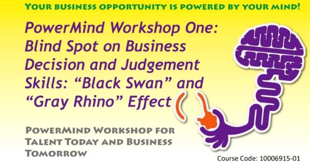 "PowerMind Workshop One: Blind Spot on Business Decision and Judgement Skills: ""Black Swan"" and ""Gray Rhino"" Effect"