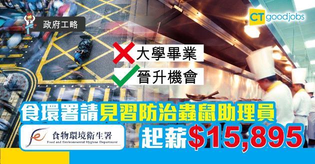 【政府工略】食環署請見習防治蟲鼠助理員 起薪$15,895